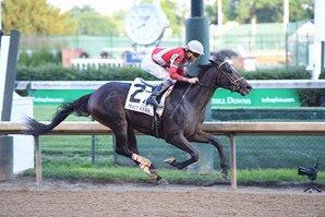 DCTM Will be handling stallion placement for McCraken